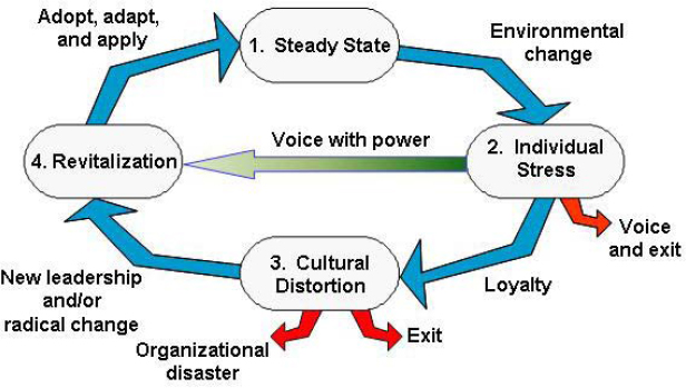 Stages of a Revitalization Process