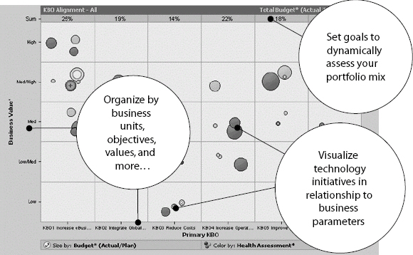 Bubble Chart—How Do You Align Your Technology With Your Business? (Courtesy Pro Sight Inc. Copyright © 2002