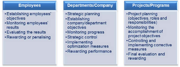Comparison between the different levels on which performance management process can be performed