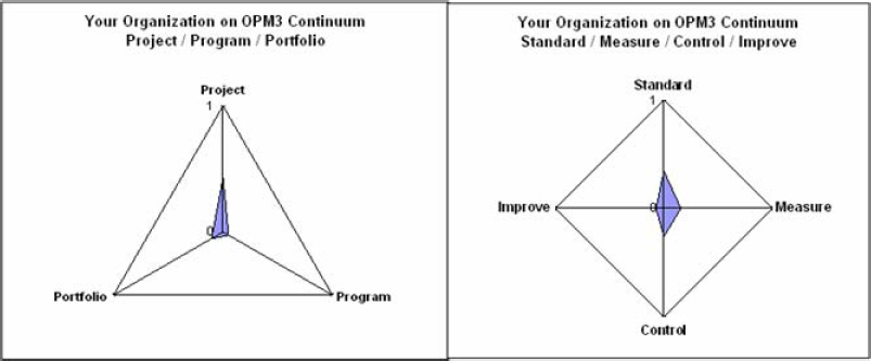 OPM3™ High-level diagnostic results
