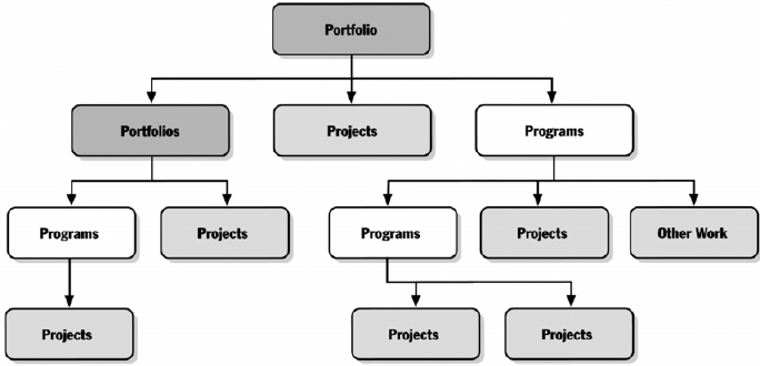 Program and Portfolio Relationships