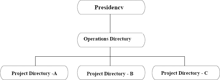 Original Organizational Chart of the Company