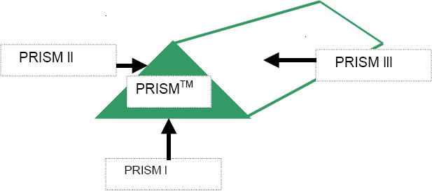 The PRISM™ MODEL