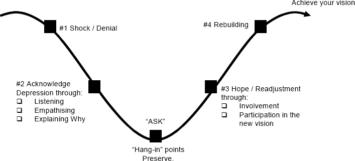 Roller Coaster Model of Change