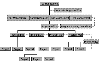 Typical projectized organizational structure