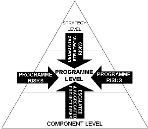 Sources of risks at program level