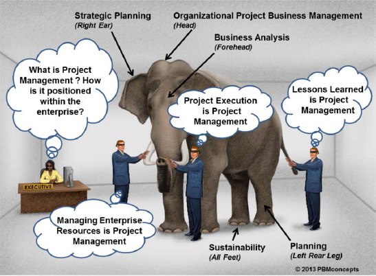 Project Management – The Elephant in the Executive Suite