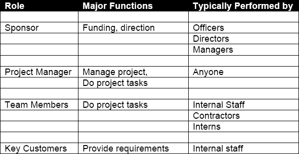 Roles/Responsibilities on Small Projects
