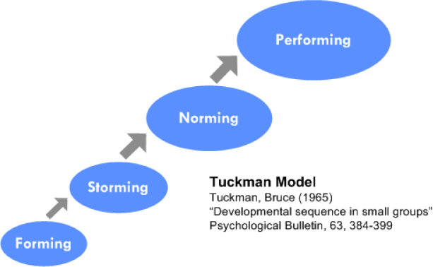 tuckmans team development model Psychologist bruce tuckman's forming, storming, norming, and performing model gives you a great way to build a highly-productive team category education.