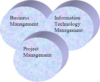 Integrated IT Project Management Model