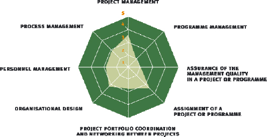 "Spider web of the model ""project-oriented company mature"" (according to Roland Gareis Management of the Project-Oriented Company®)"