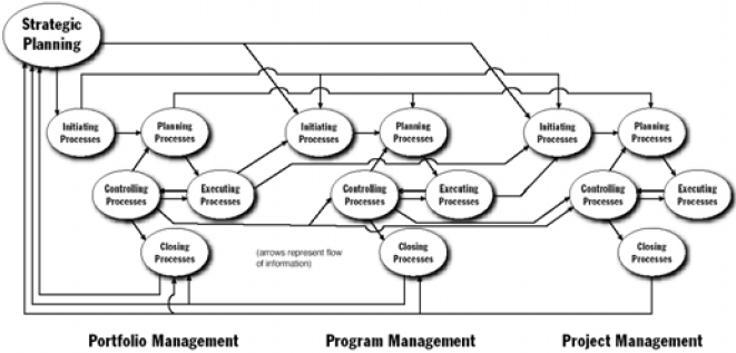 Organizational Project Management Processes