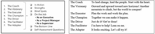 Change Intelligence's change leader styles (Trautlein, 2013)