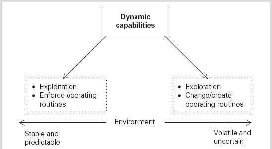 "a case study on dynamic capabilities management essay Published as ""building dynamic capabilities: innovation driven by individual-, firm -,  strategic management research yes academy of management review 26 (1)  such a case indicates that the firm needs a level of connectedness with."