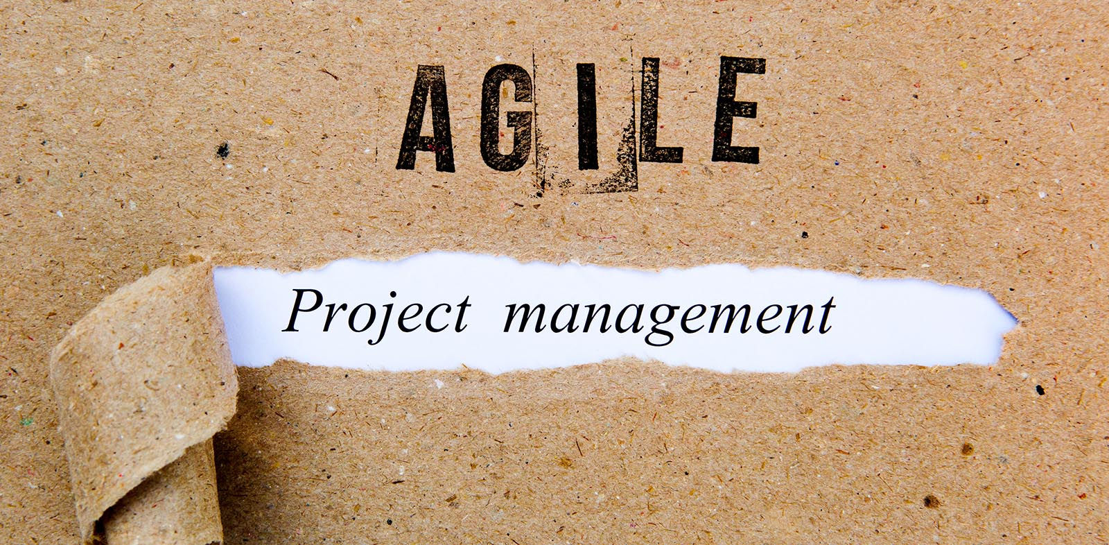 Agile project management words printed on brown paper